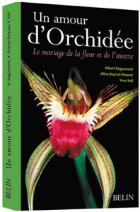 amour d'orchidee