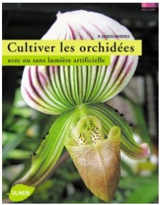 cultiver orchid