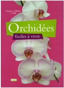 orchidee facile a vivre
