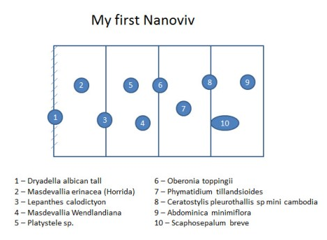 nanoviv map